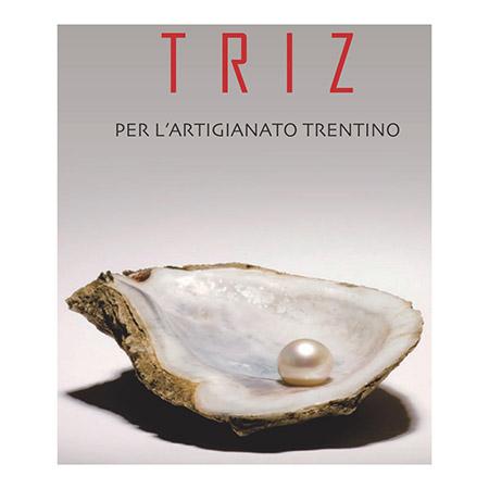 TRIZ per l'artigianato trentino – 2° edizione